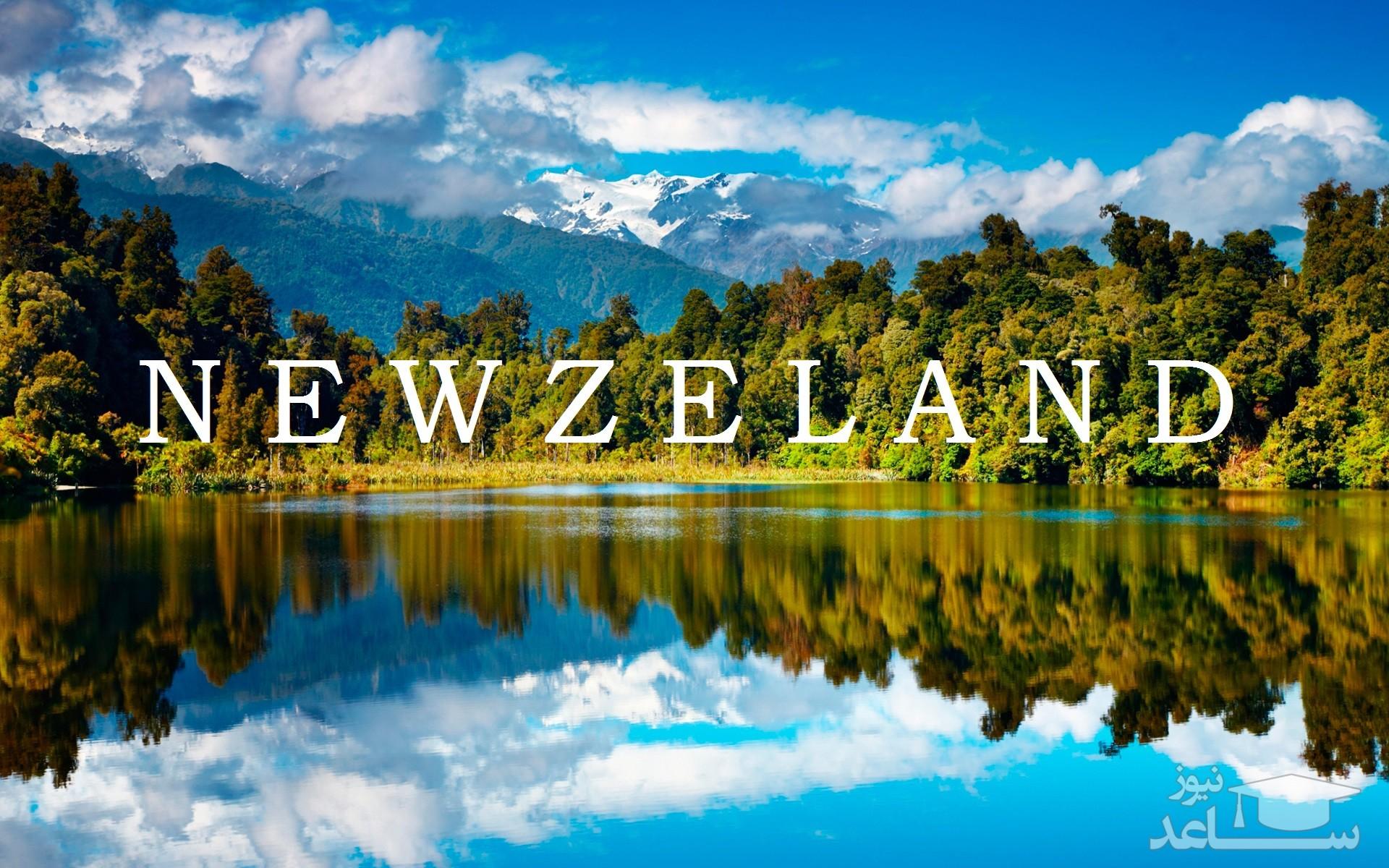 مزایا و معایب تحصیل در کشور نیوزلند