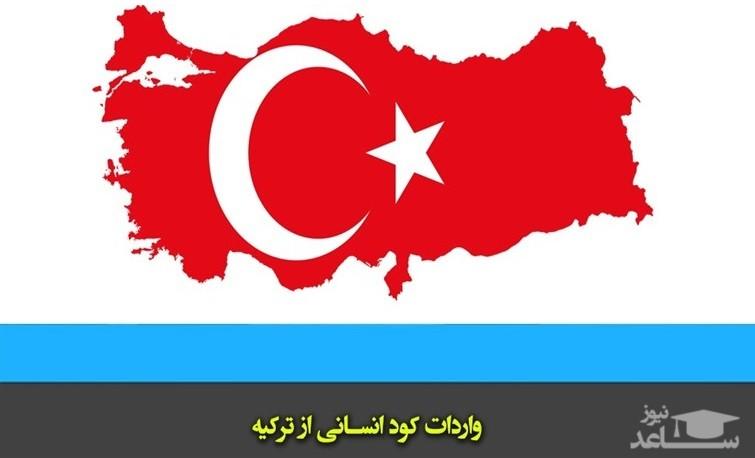 """واردات """"کود انسانی"""" از ترکیه به ایران؛ چرا و چگونه؟!"""