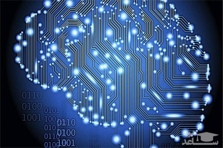 تلاش دارپا برای ایجاد نوعی هوش مصنوعی با بازآفرینی کامل عملکرد مغز انسان