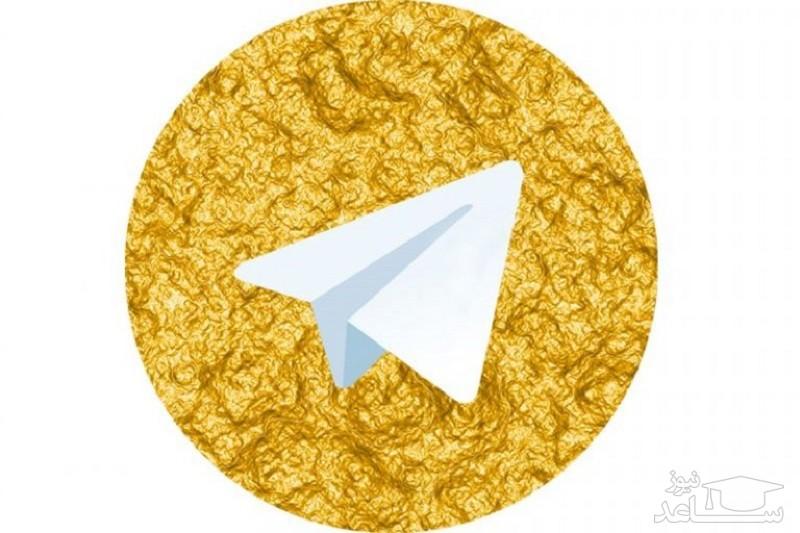 وزیر اطلاعات: «تلگرام طلایی» متعلق به جمهوری اسلامی است!