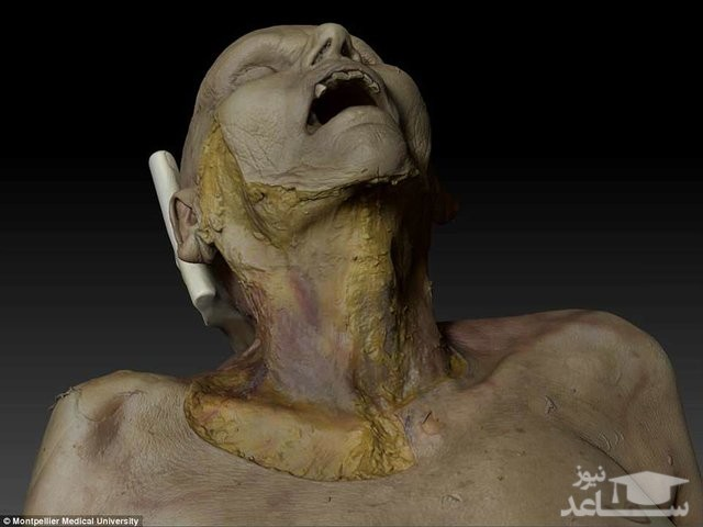 جسد مجازی برای کالبدشکافی تولید شد!