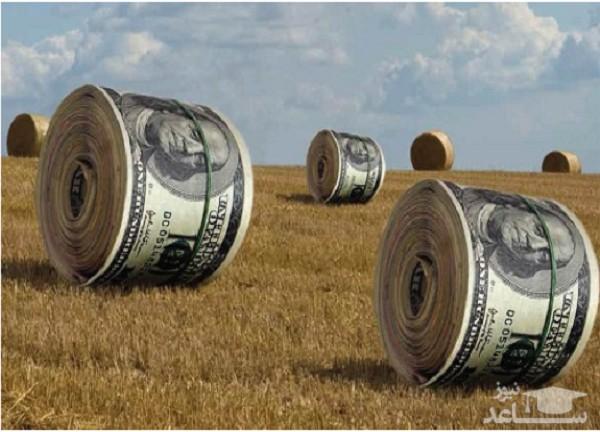 منابع و دروس رشته مهندسی اقتصاد کشاورزی و ضرایب آن در مقطع کارشناسی ارشد