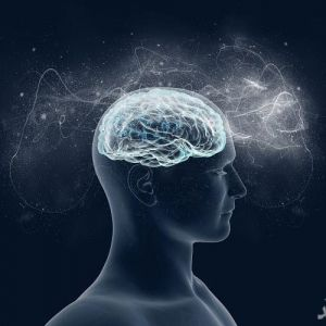 چرا برخی از انسان ها IQ بالایی دارند؟