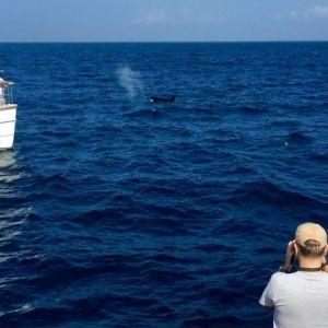 منابع و دروس رشته اقیانوس شناسی فیزیکی و ضرایب آن در مقطع کارشناسی ارشد