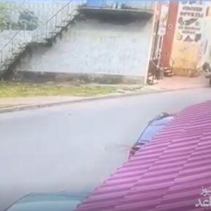 (فیلم) راننده مست 4 جوان را با خونسردی زیر گرفت و رفت