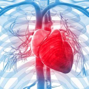 چرا قلب دچار تپش ناگهانی میشودو راه حل چیست؟