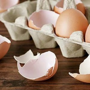 پوست تخم مرغ درمانی برای آرتروز