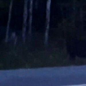 (فیلم) رویت موجود آدم نمای عجیب در جنگل های کانادا!