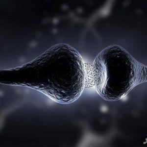 رژیم سروتونین چیست و چه کاربردی دارد؟