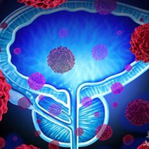 همه چیز درباره عملکرد غده پروستات در مردان