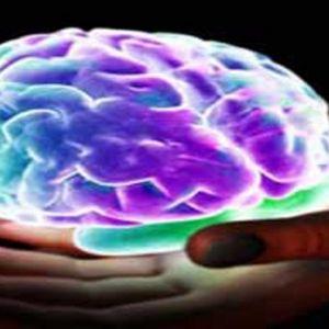هنگام رابطه جنسی و ارگاسم چه اتفاقی در مغز می افتد؟
