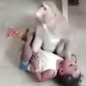 (فیلم) دزدیدن یک بچه توسط میمون !