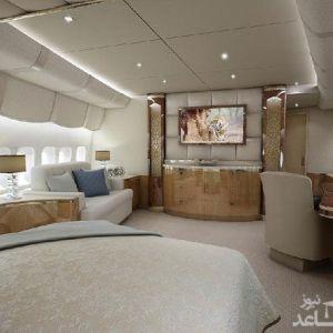(عکس) بزرگترین هواپیمای خصوصی جهان