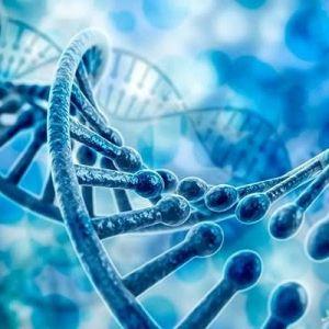 آیا فناوری ویرایش ژن در انسان با شکست مواجه خواهد شد؟