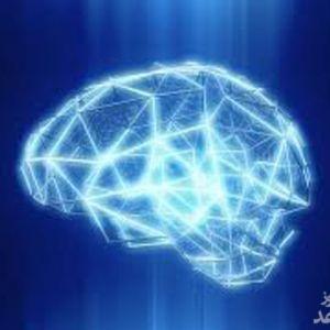 خلق ساختارهای هندسی 11 بُعدی توسط مغز انسان