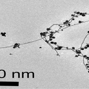 نانو ذرات طلا با آب تولید میشود.