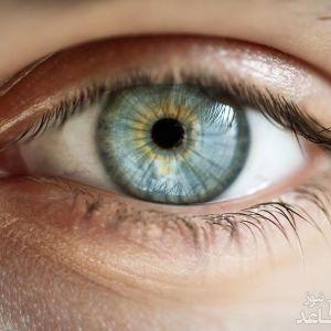 بازشناسی اشیاء در جهت کمک به افراد نابینا