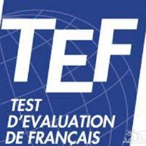 آزمون زبان فرانسه TEF چیست؟