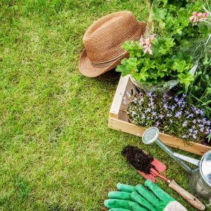 نمونه کارنامه و ظرفیت پذیرش مجموعه علوم و مهندسی باغبانی در مقطع کارشناسی ارشد