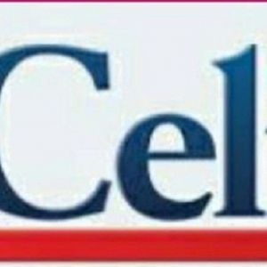 هزینه و نحوه ثبت نام آزمون زبان ایتالیایی چلی(CELI)