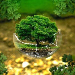 نمونه کارنامه و ظرفیت پذیرش رشته علوم و مهندسی محیط زیست در مقطع کارشناسی ارشد