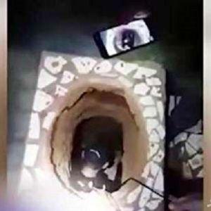 (فیلم) نقشه فرار از زندان از راه کاسه توالت!
