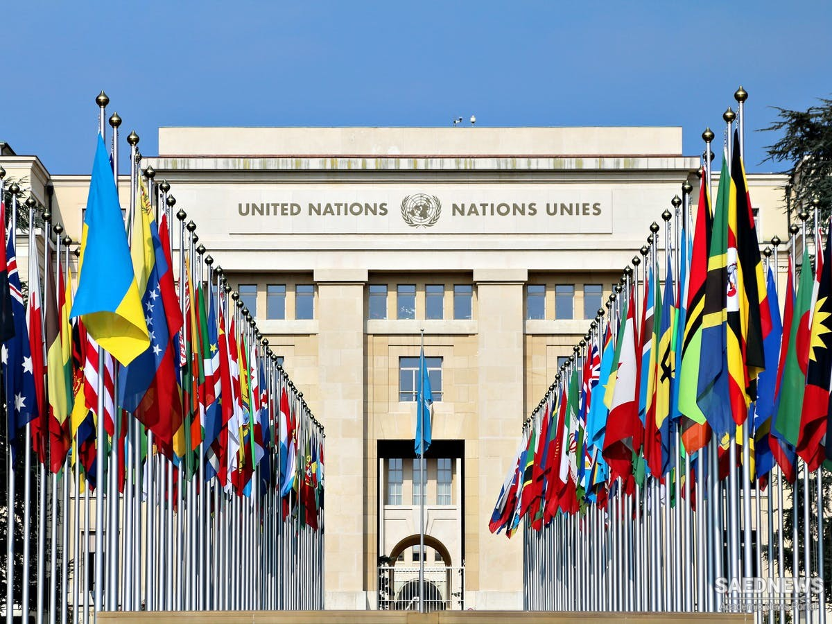 UNSCOB and Its Evolution