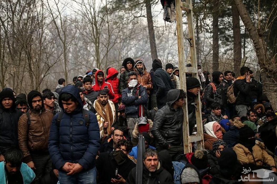 روایتی از مرگ ۷ پناهجو در مرز ایران و ترکیه