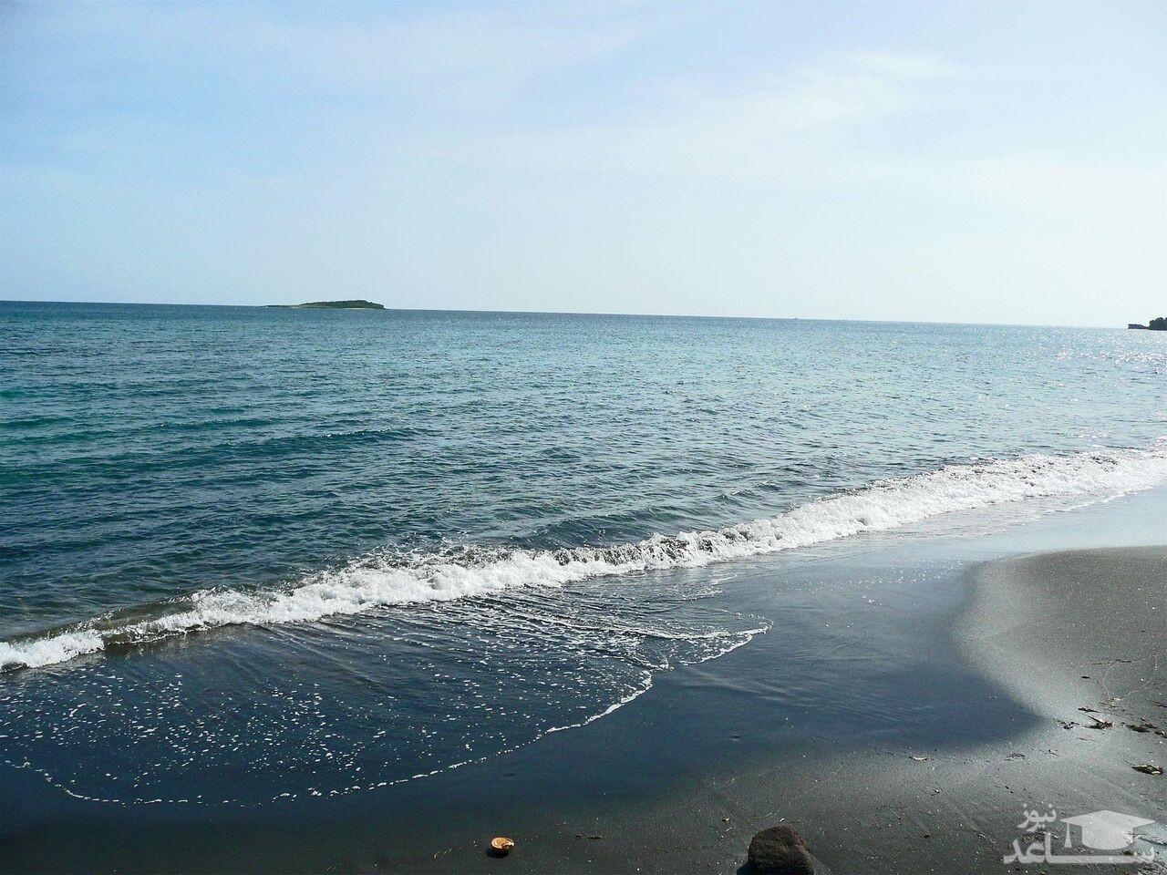 هیولای دریای خزر پس از 40 سال از دریا بیرون آمد ! + فیلم باورنکردنی