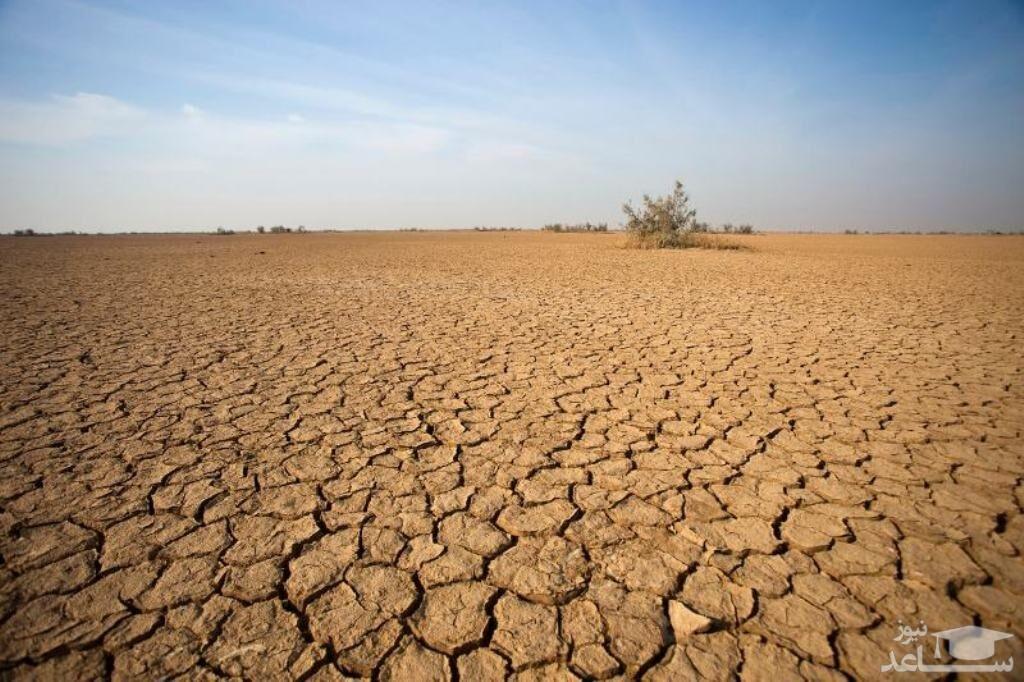 تلاش زن کشاورز در عشیره خلف برای نجات مزرعه اش از خشک شدن+عکس