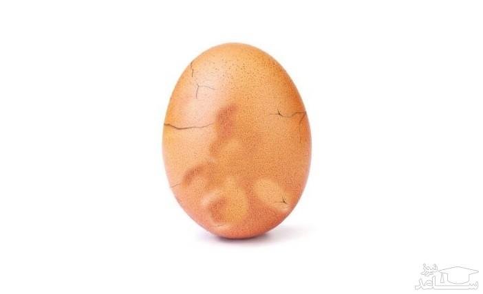 افشای راز تخم مرغ مشهور اینستاگرام