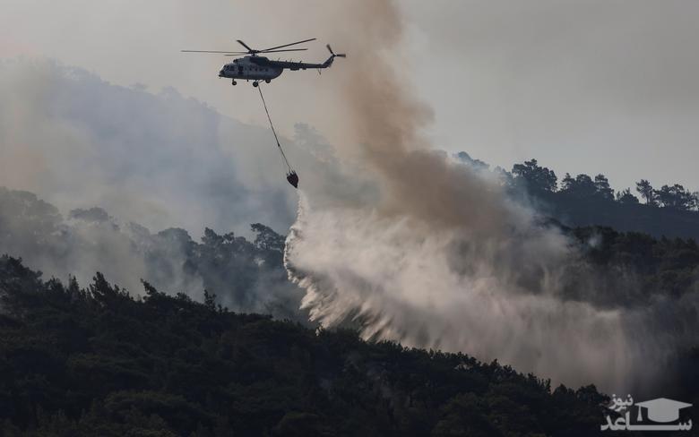 آتش سوزی جنگلی در ترکیه
