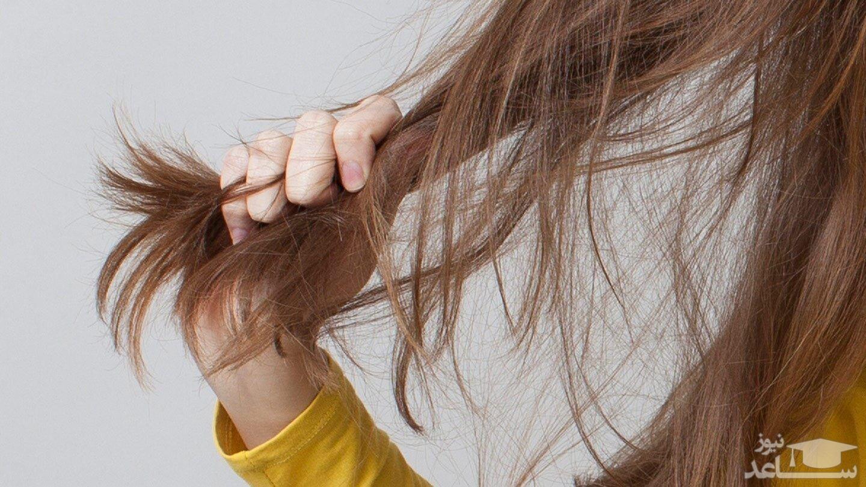 فردی که مو های فوق العاده اش را 1 میلیون دلار بیمه کرده است