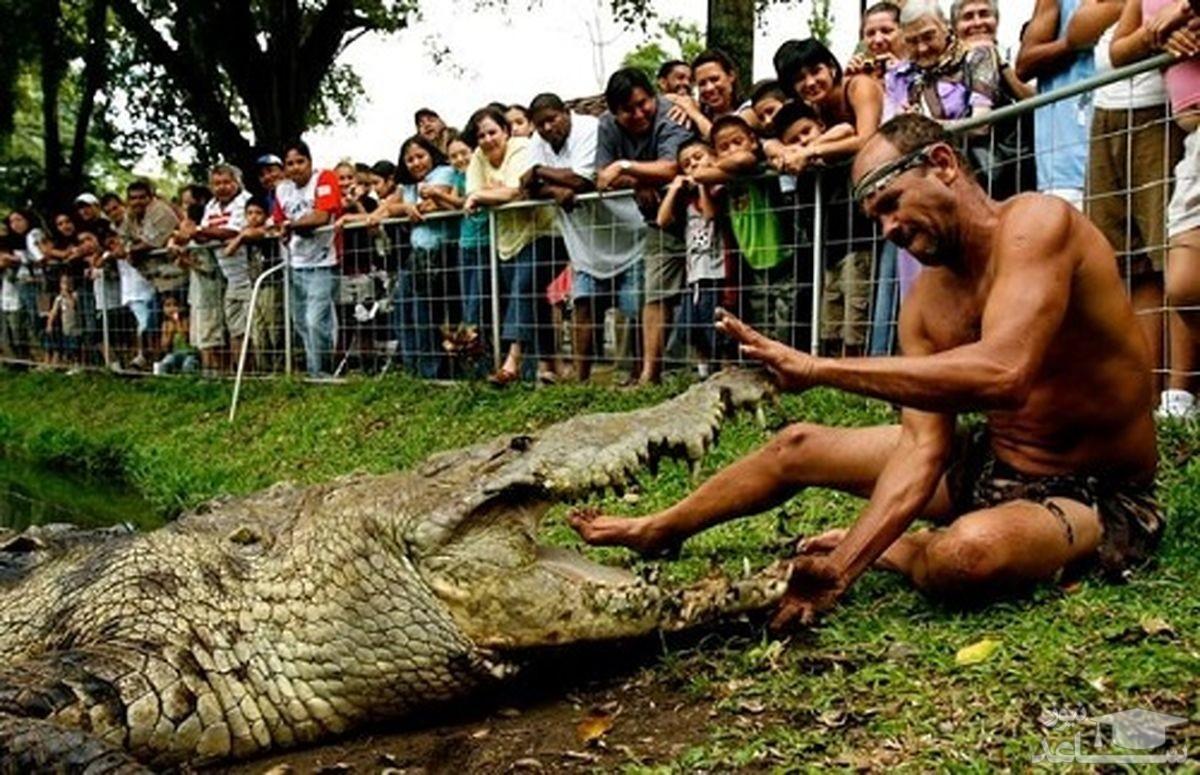 مردی که به خاطر عشق شدید به تمساح طلاق گرفت!