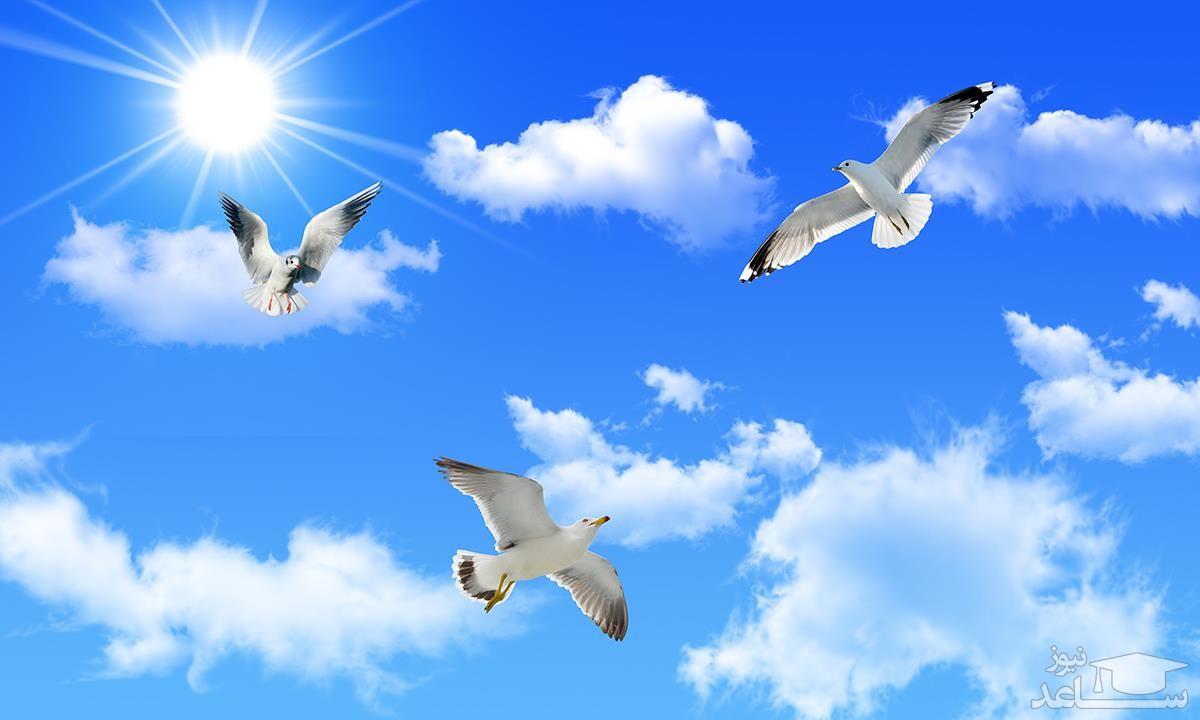 دیدن آسمان در خواب چه تعبیری دارد ؟/تعبیرخواب آسمان