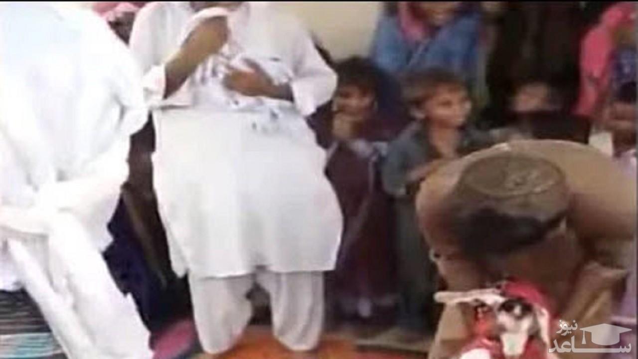 (فیلم) مرد پاکستانی با یک بز ازدواج کرد !