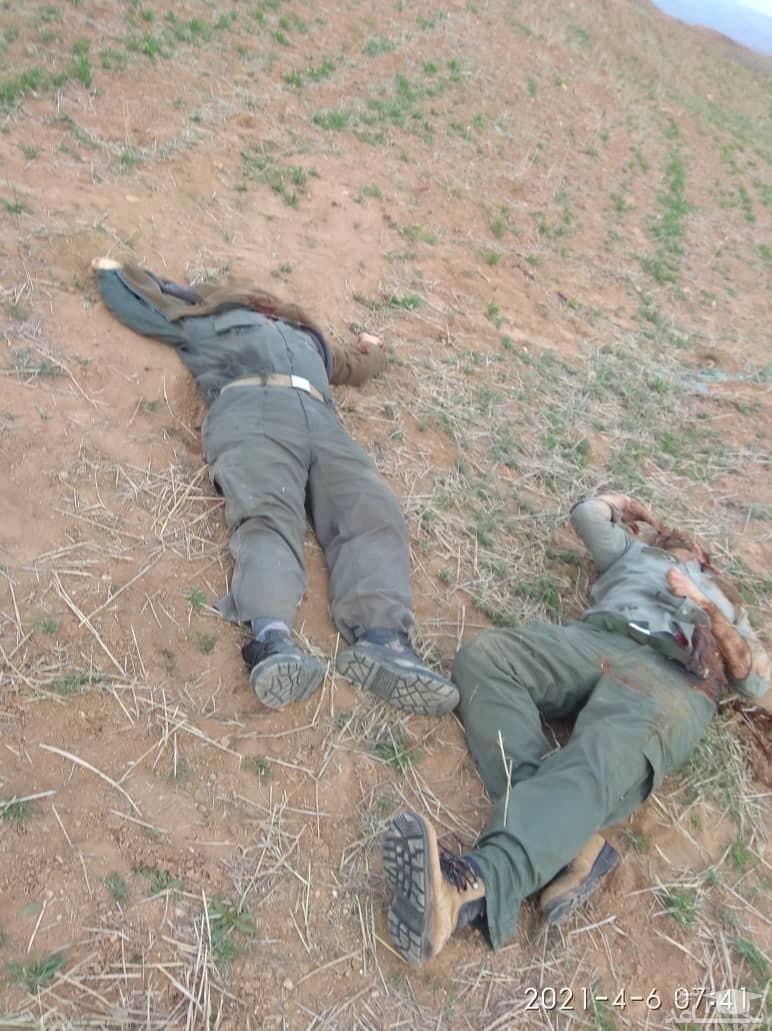 (فیلم)جزئیات جنایت شب گذشته و قتل دو محیطبان