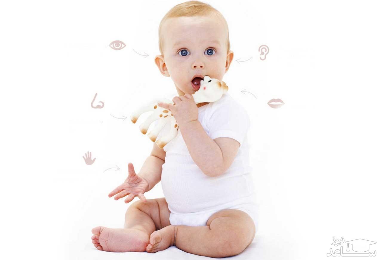 مراحل رشد و تقویت حواس پنج گانه در کودکان