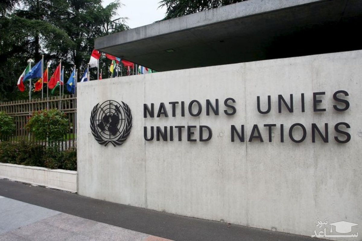 فیلم جنجالی رابطه جنسی دو نفر در خودروی ماموریت سازمان ملل!