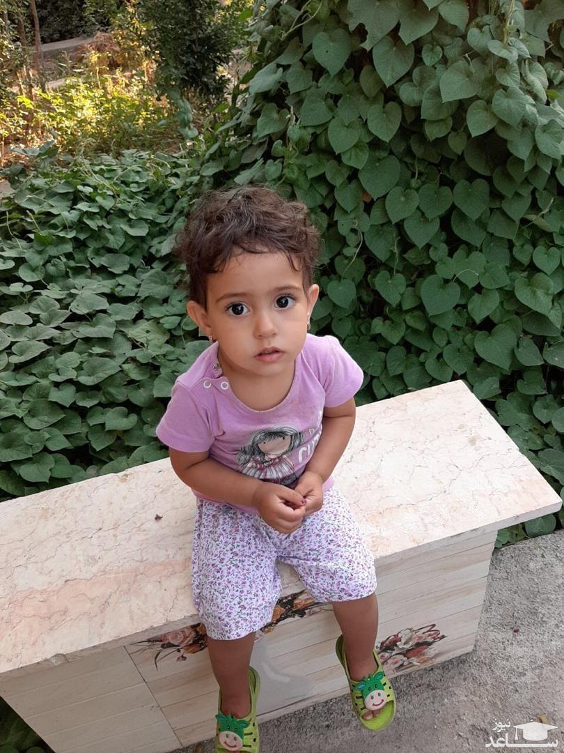 اتفاقی عجیب در سرنوشت زهرای گمشده در جنوب تهران / سگ های زنده یاب وارد صحنه شدند