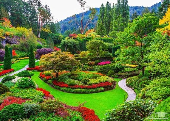 دیدن باغ در خواب چه تعبیری دارد؟ / تعبیر خواب باغ