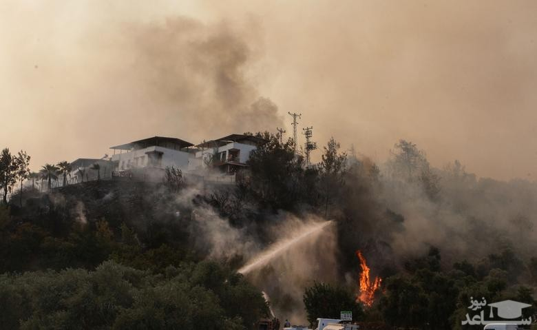 آتش سوزی جنگلی