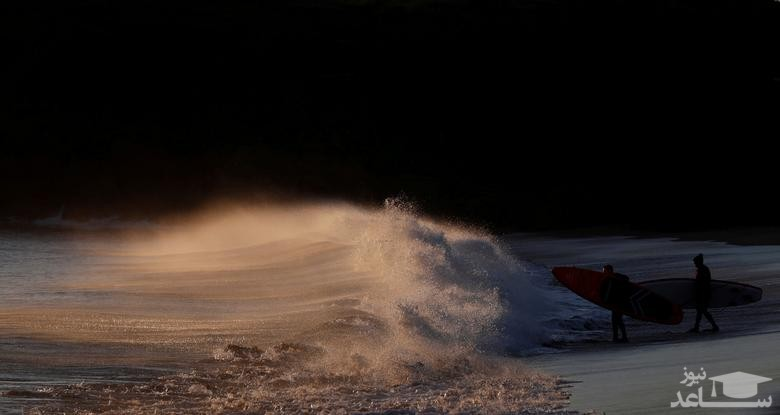 موج سواران انگلیسی در حال ورود به دریا در سواحل جنوبی انگلیس/ رویترز