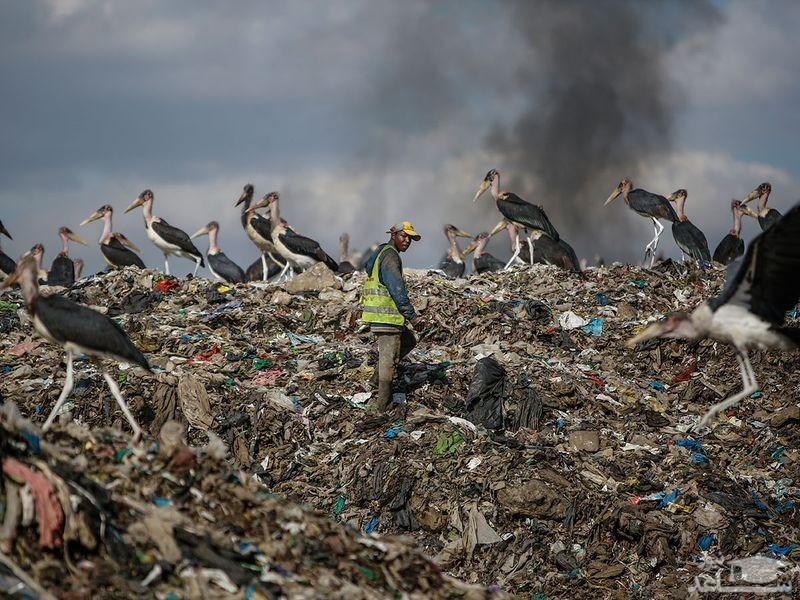 مرکز دپو زباله