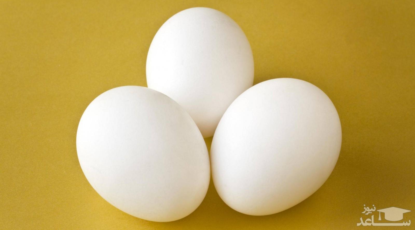 از قرار معلوم قیمت تخم مرغ نیز قصد پرکشیدن دارد