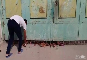 (فیلم) عجیبترین شیوه خرید کردن دانشآموزان یک مدرسه در اهواز
