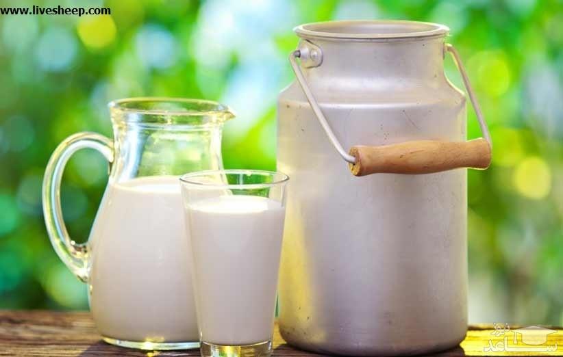 با فواید و مضرات شیر بیشتر آشنا شوید