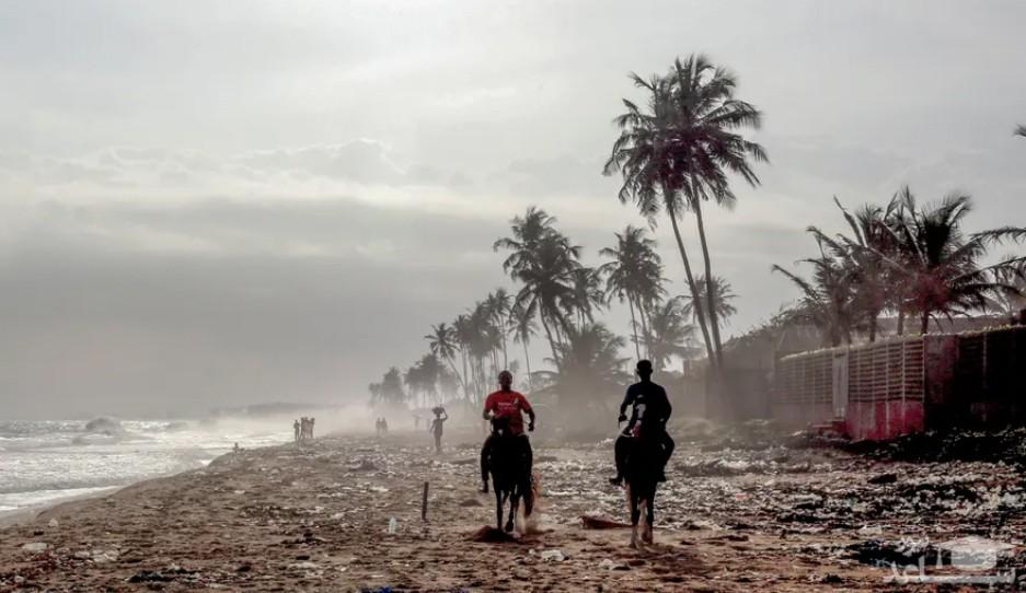 اسب سواری در کنار ساحل