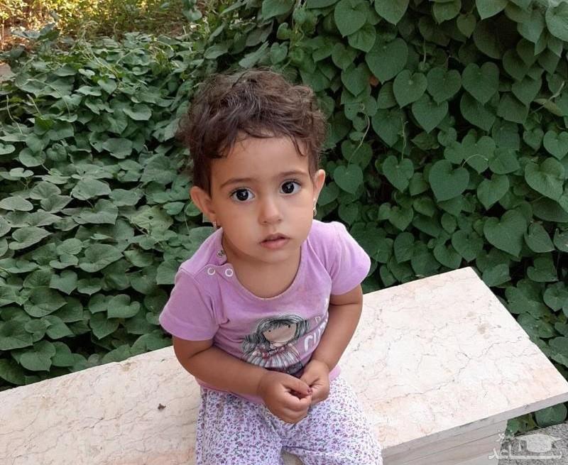 زهرا 2 ساله در جنوب تهران گم شد! / او را دیدید به پلیس خبر دهید! + عکس ها