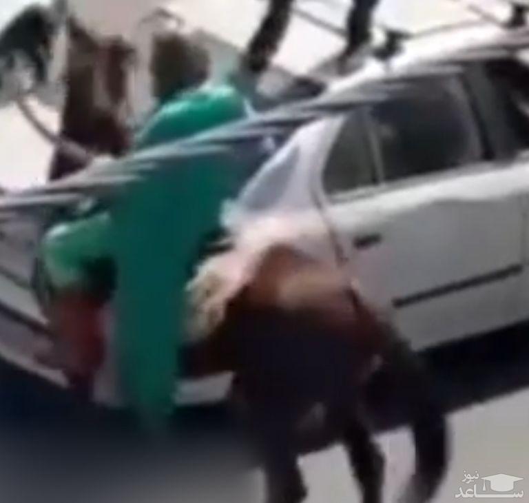 اسب سواری امام زمان قلابی با شمشیر در خیابان های اصفهان +فیلم